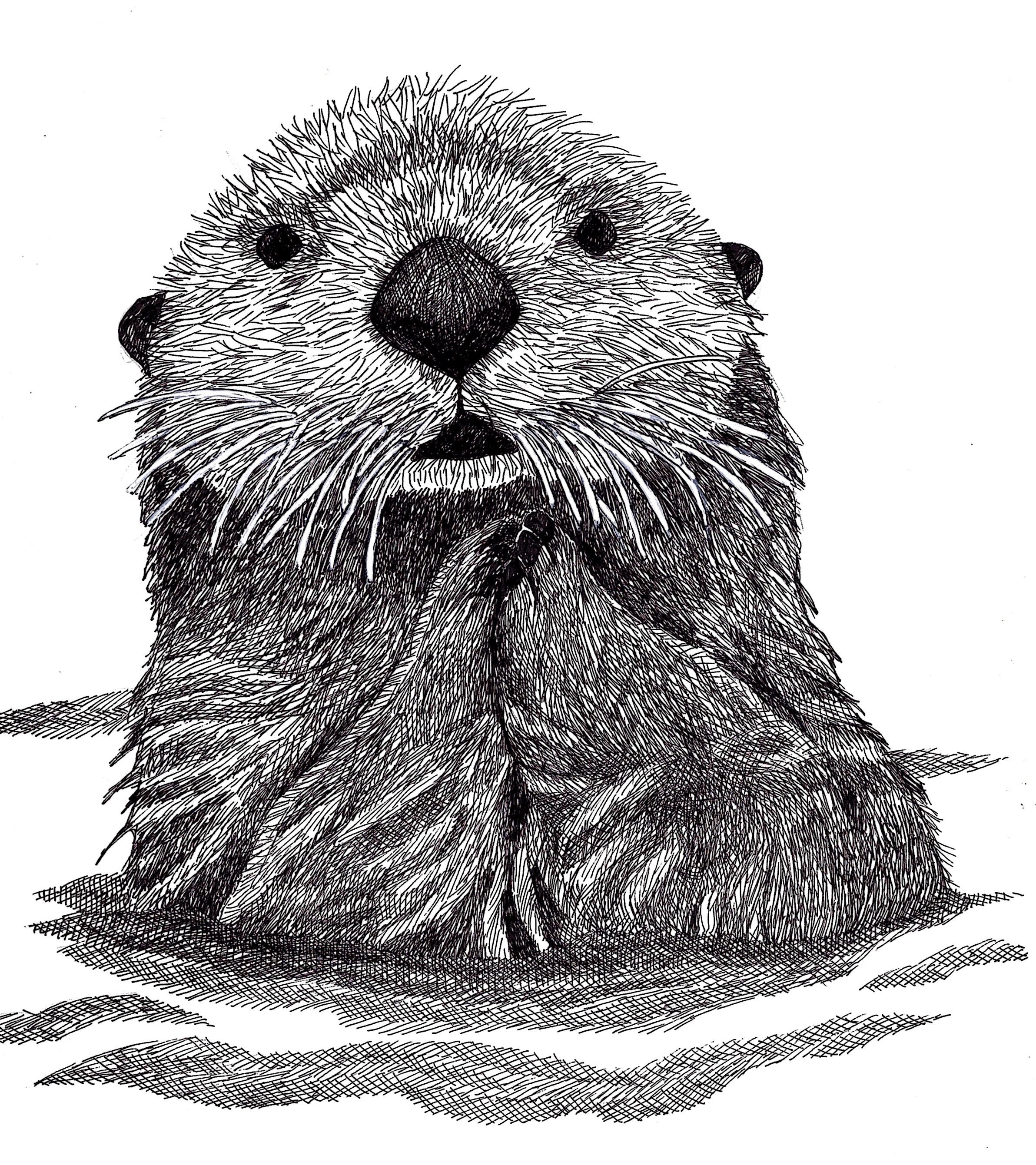 Sea Otter – Make Art…Magic Happens  Sea Otter – M...
